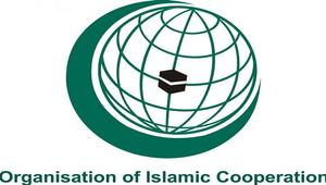 OIC foreign ministers conference begins in Niger