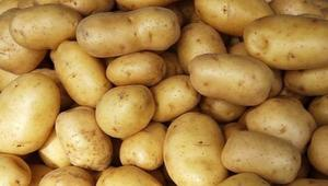 Govt. revises potato price