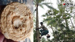 স্বাদে-ঘ্রাণে অতুলনীয় ঝিটকার হাজারি গুড়