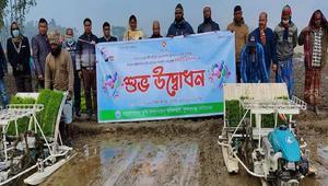 সুন্দরগঞ্জে 'সমলয় চাষাবাদ' পদ্ধতিতে বোরো রোপন