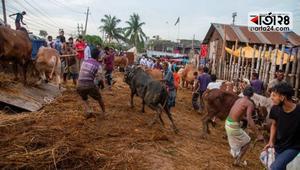 কোরবানির পশুর হাট যেন করোনা সংক্রমণের বাজার না হয়