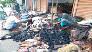 রাজশাহীতে চামড়ার দাম কম, বিপাকে মৌসুমী ব্যবসায়ীরা