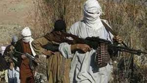 262 Taliban terrorists killed in Afghanistan