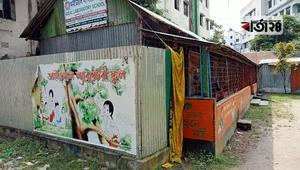 মির্জাপুরে শিক্ষার্থী সংকটে কিন্ডারগার্টেন স্কুল
