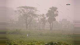 কুয়াশায় ঘেরা রাজধানীর বিভিন্ন এলাকা। ছবিটি রায়েরবাগ এলাকা থেকে তুলেছেন মেহেদী হাসান।