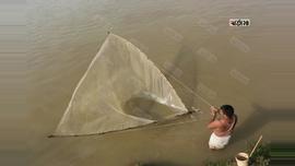 সিলেটের সুরমা নদীতে ছিটকা জাল দিয়ে মাছ ধরছেন জেলেরা। ছবি: আবু বকর।