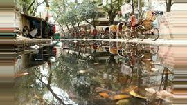 রাজধানীর ইস্কাটন গার্ডেন রোডে সুইড বাংলাদেশ বুদ্ধি প্রতিবন্ধী স্কুলের কাছে ড্রেনের পানি উপচিয়ে রাস্তার বেহাল অবস্থার সৃষ্টি হয়েছে। ছবি : বার্তা২৪.কম