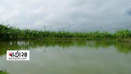নাটোরের ২ উপজেলায় কয়েকশ' পুকুর, ভোগন্তিতে ৩০ গ্রামের..