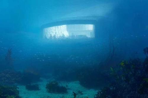 ইউরোপের প্রথম পানির নিচের রেস্তোরাঁ