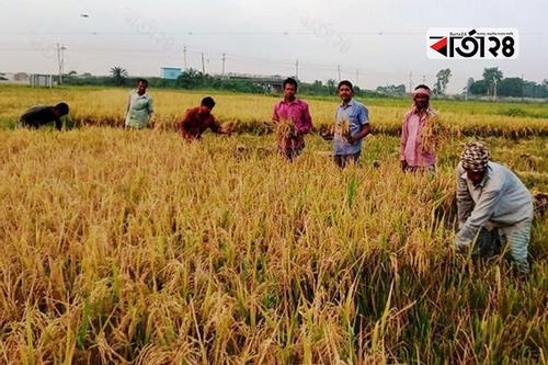 বদলে যাচ্ছে নবাবগঞ্জের আর্থ-সামাজিক অবস্থা
