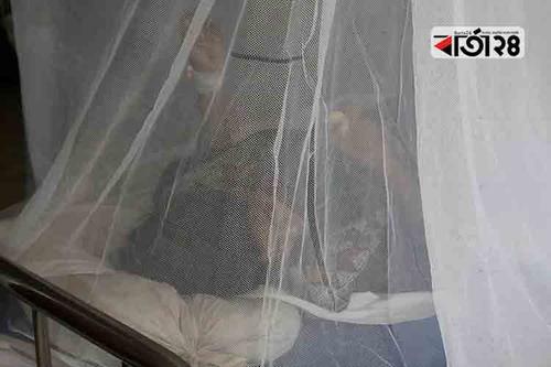 মেহেরপুরে ৪৮ জন ডেঙ্গু রোগী শনাক্ত
