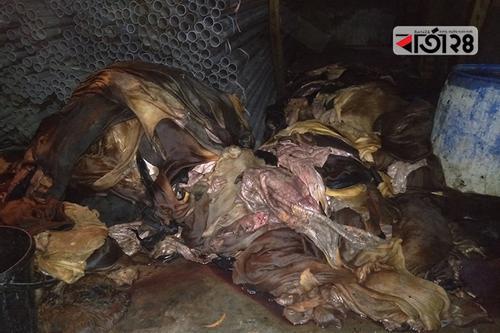 আড়তদার বিক্রি করলেই চামড়ার টাকা পাবে মাদরাসা-এতিমখানা