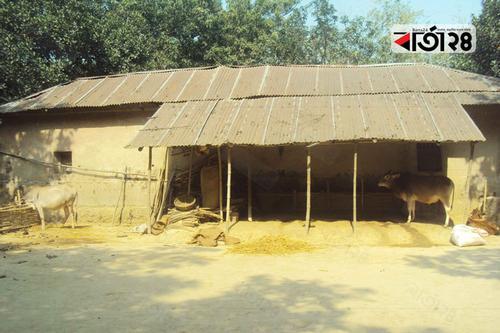 গ্রামের মানুষের এসি ঘর