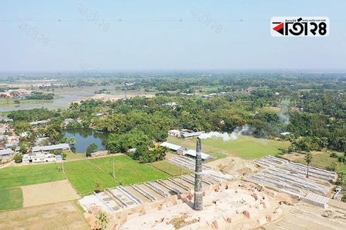 রাজশাহীতে ইটভাটায় পুড়ছে আমচাষীদের স্বপ্ন