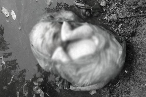 পলিথিনে মোড়ানো অবস্থায় নবজাতক উদ্ধার