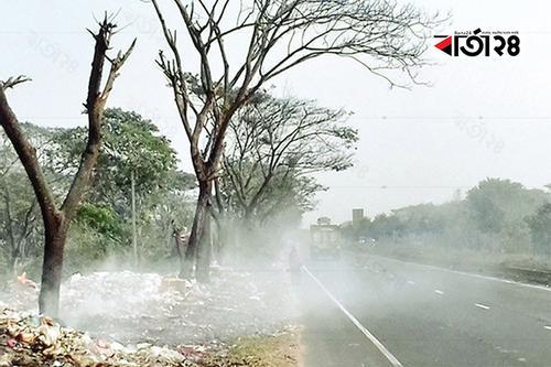 কুমিল্লায় মহাসড়কে ময়লার আগুনে পুড়ছে শত গাছ