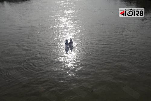 ৫ বছরের শিশুকে নদীতে ফেলে দিলেন সৎ মা!