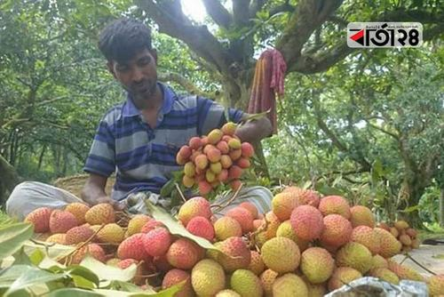 Embargo on movement of trucks put the farmers in agony