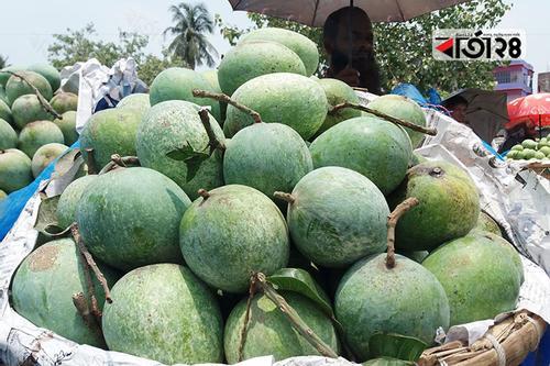 চাঁপাইনবাবগঞ্জে নতুন জাতের 'টাইগার আম'