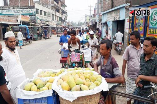 ওজন জটিলতায় কানসাটে আম কেনাবেচা বন্ধ