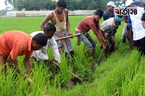 কুমিল্লায় ১১ গ্রামের গ্যাস সংযোগ বিচ্ছিন্ন