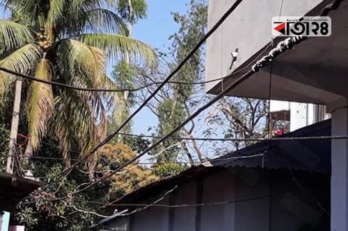 গাইবান্ধায় বিদ্যুতের ঝুলন্ত তার মানুষের মরণফাঁদ