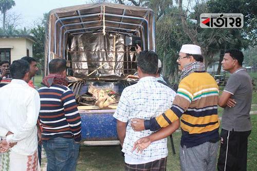 গাংনীতে গুলি বিনিময়ে মাদক কারবারি নিহত