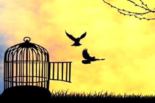স্বাধীনতার মূল্য ইহকাল ও পরকালে