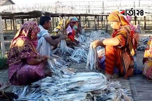 দুবলা শুঁটকি পল্লী থেকে অর্ধকোটি টাকারও বেশি রাজস্ব আদায়