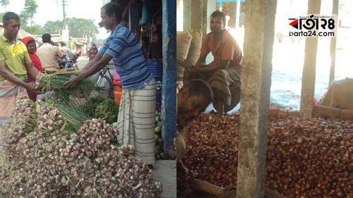 গাইবান্ধার বাজারে পাতা পেঁয়াজ, কমছে দাম