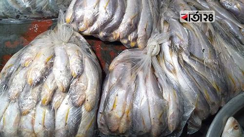 পটুয়াখালীতে সরবরাহ বেড়েছে পোয়া মাছের, দামে স্বস্তি