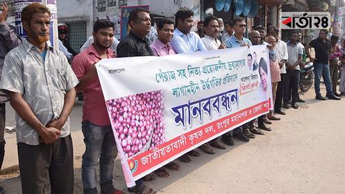 'পেঁয়াজ সিন্ডিকেটে লাভবান ব্যবসায়ী, ক্ষতিগ্রস্ত কৃষকরা'