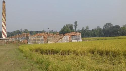 ভূঞাপুরে ইটভাটা বন্ধ করলো ভ্রাম্যমাণ আদালত