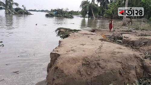 মধুমতি-নবগঙ্গা নদীর ভাঙন ঠেকাতে উদ্যোগ নেই