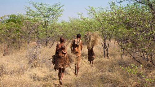 বতসোয়ানা থেকেই আধুনিক মানুষের যাত্রা, বলছে গবেষণা