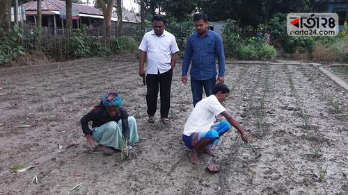গাইবান্ধায় 'ঔষধি মাতৃবাগান'