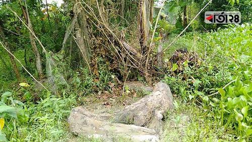 ক্ষমা চাইলেন পথে বেড়া দেয়া প্রভাবশালীরা