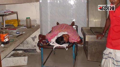 সিরাজগঞ্জে নাতির কুড়ালের আঘাতে নানির মৃত্যু