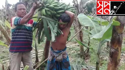 আদিবাসীদের সংকট কাটাতে পণ্য কিনছে 'স্বপ্ন'
