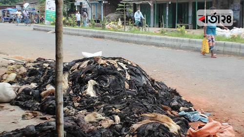 সিন্ডিকেটের দখলে চামড়ার বাজার, নিঃস্ব মৌসুমি ব্যবসায়ীরা