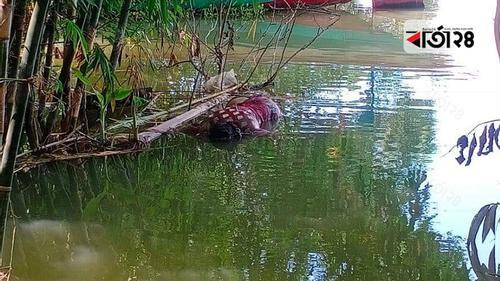 ধামরাইয়ে নদী থেকে শিক্ষার্থীর মরদেহ উদ্ধার