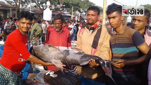 দুই'শ বছরেও ঐতিহ্য হারায়নি হবিগঞ্জের 'মাছ মেলা'