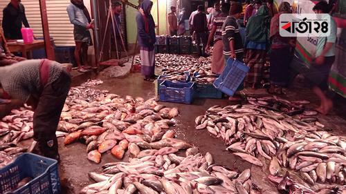 বরিশালে গভীর রাতে বসে মাছের পাইকারি বাজার