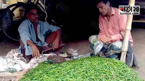 বন্যার অজুহাতে নাটোরে কাঁচা মরিচের ঝাল বেড়েছে কয়েকগুণ