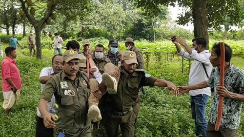 ভূমিদস্যুদের হামলায় বন বিভাগের ৩ কর্মকর্তা আহত