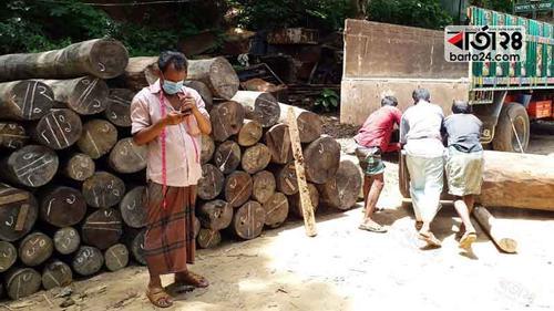 রাঙামাটিতে কাঠ পাচারের সময় কাঠভর্তি ট্রাক আটক