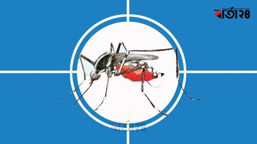 Dengue patients are increasing
