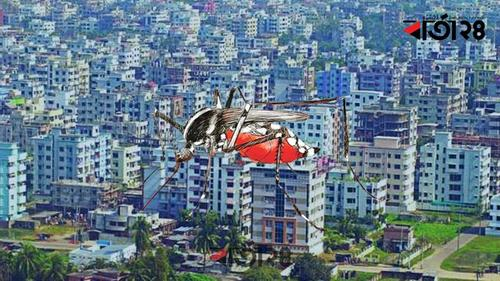 Aedes mosquitoes are most prevalent in two areas of Dhaka