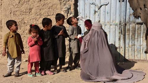 আফগানিস্তানে বন্দুকধারীদের গুলিতে তিন নারী স্বাস্থ্যকর্মী নিহত