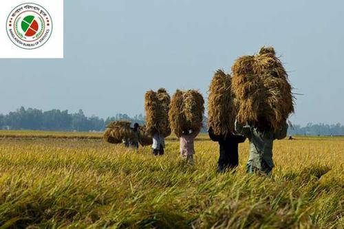 তিন পার্বত্য জেলাকে গুরুত্ব দিয়েই শুরু পঞ্চম কৃষি শুমারির